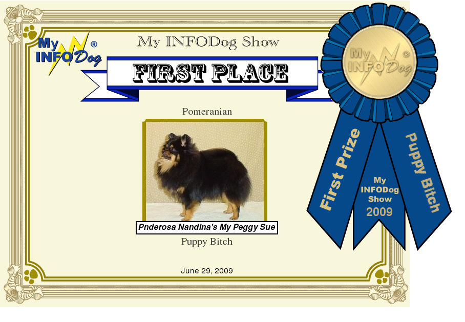 Nandina Shelties Showing II